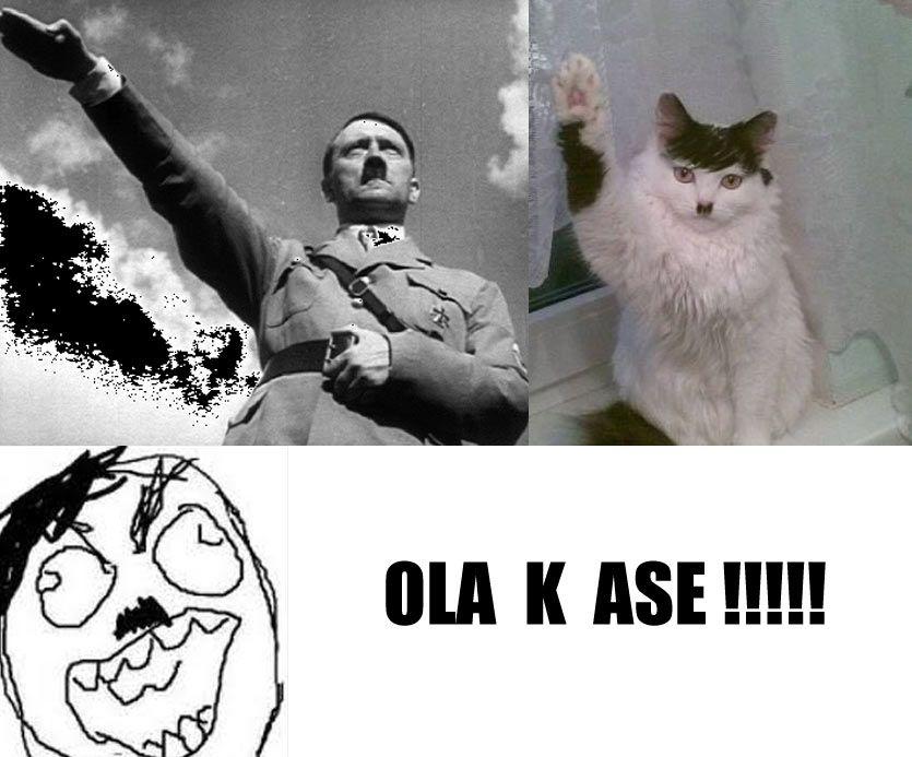 El gato nazi