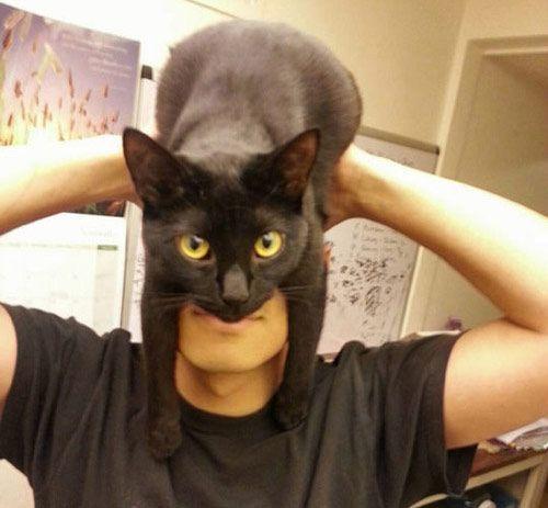 Disfraz barato de Batman
