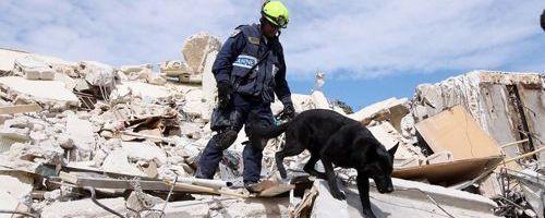 Imágenes del terremoto de Haití