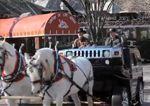 Hummer tirado por caballos – El resultado final