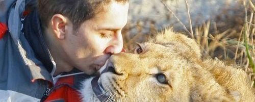 Año y medio con un león en casa
