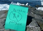 Prohibido dar patadas a los pingüinos